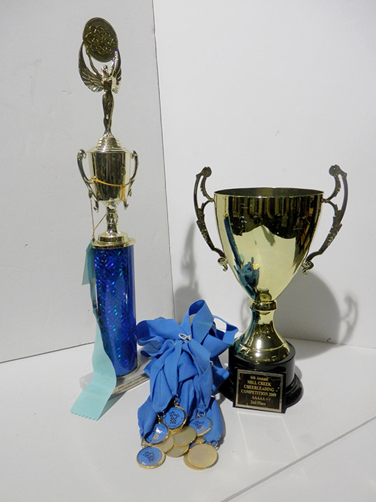 medal gold cup trophy blue ribbons