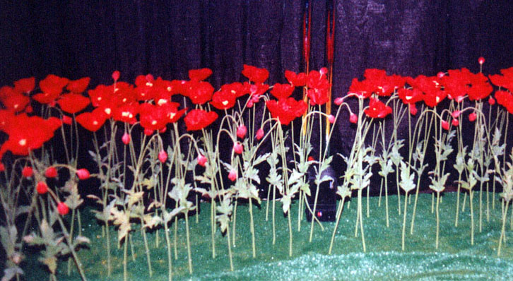 Wizard of Oz Poppies Flowers Red