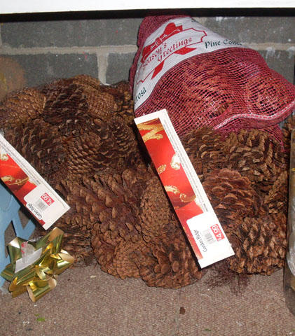pine cones bags christmas