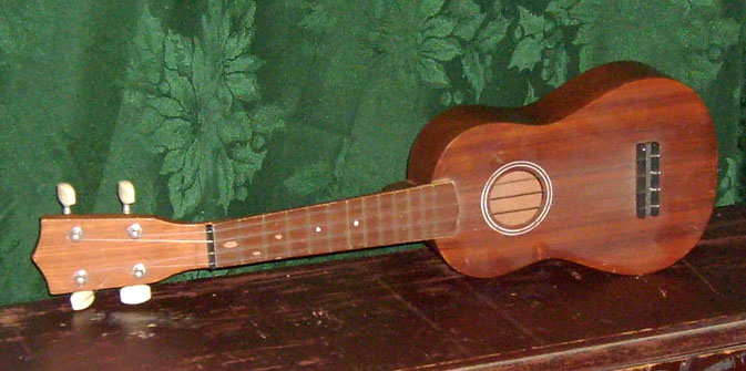 tropical beach ukelele music instrument stringed
